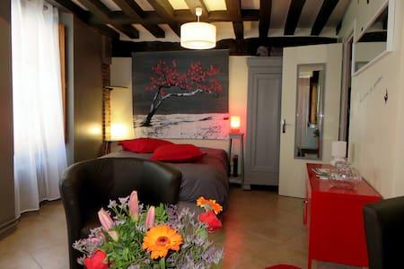 Beau studio Coeur de Ville Chartres - Apartemen