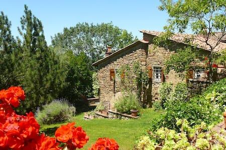 Selvabella in Chianti B&B Il Riccio - Greve in Chianti - Bed & Breakfast