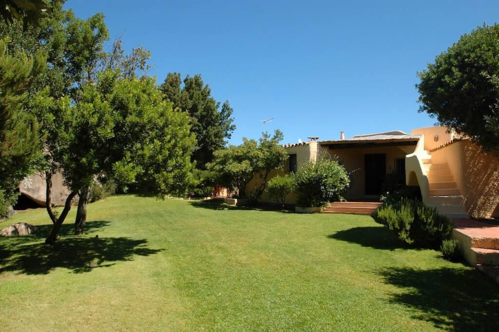 Garden, main entrance and access to the top terrace