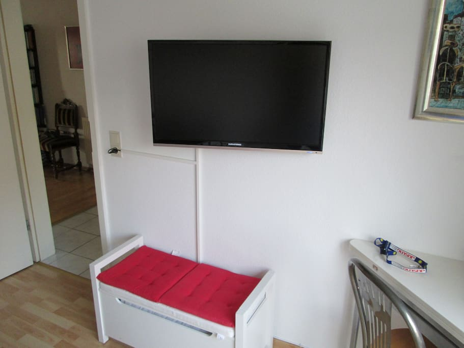 32 inch LED TV with hundreds of channels