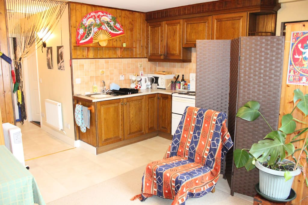 kitchen with electric cooker.