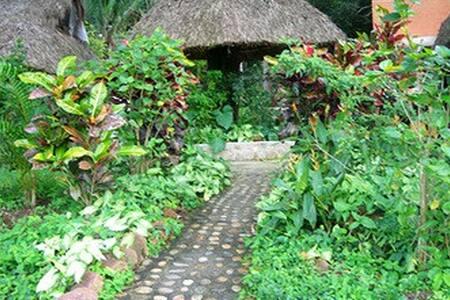 Cabin in the jungle Mont Moria