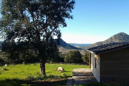 CHAMBRE D'HOTE MONTE A TORRA - Poggio-d'Oletta