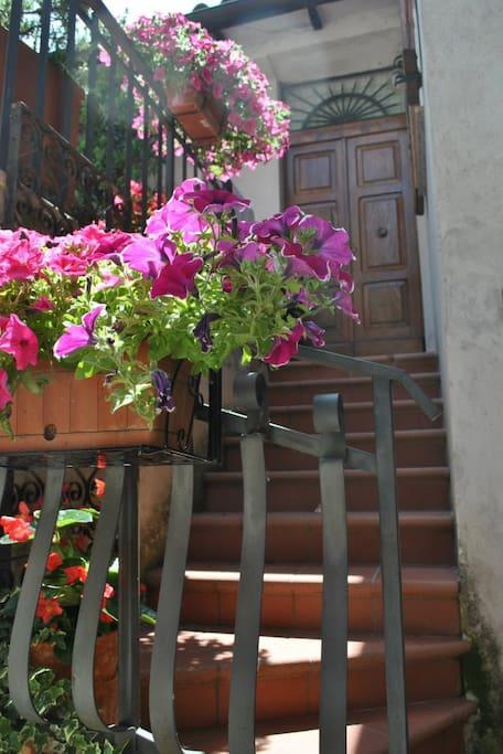 house's steps