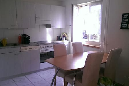 Charming room very close to Zurich - Leilighet