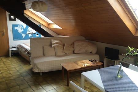 charming studio - Carouge - Wohnung