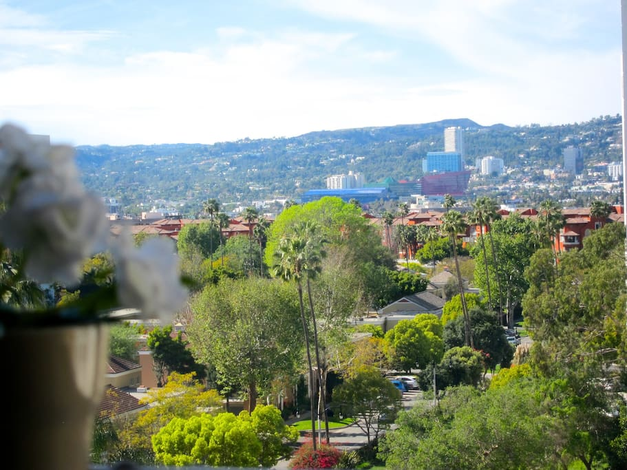 View from the living room's window: it is framing the houses of Beverly Hills nestling against the Hollywood Hills, the bright colors of the Pacific Design Center, the Beverly Center and the top of any tall palm tree of the neighborhood.