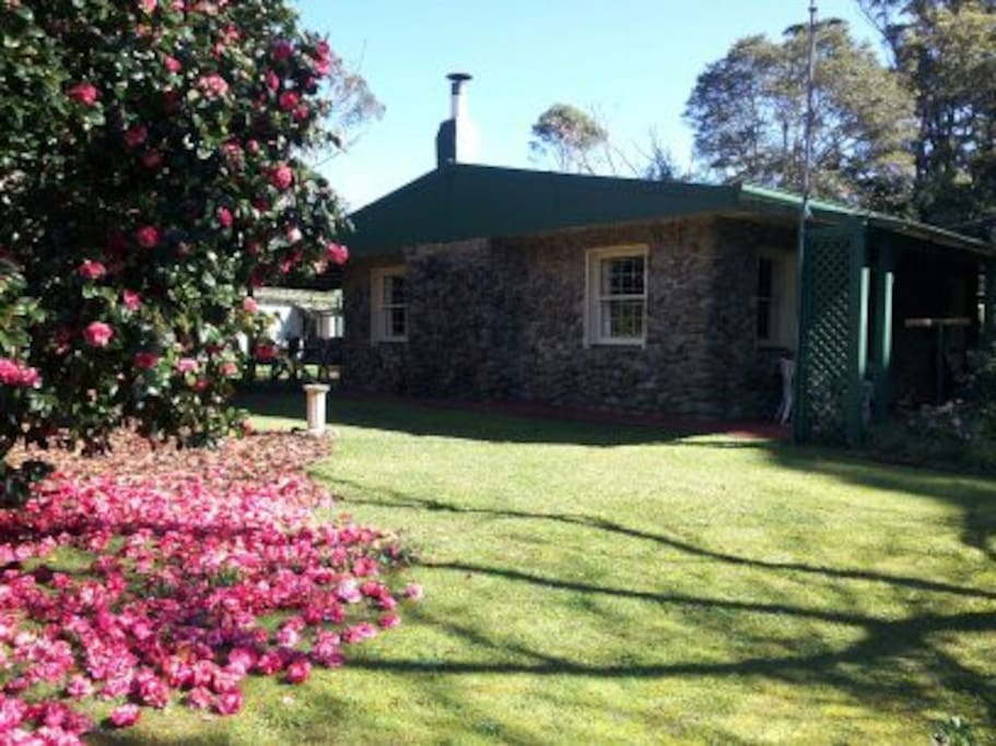 The cottage is surrounded by beautiful trees and plants.