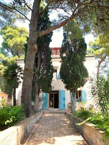 Beautiful Villa on Small Island - Mali Losinj