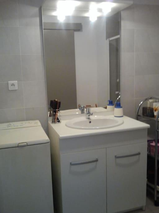 salle de bain avec Lave Linge et radiateur seche serviette