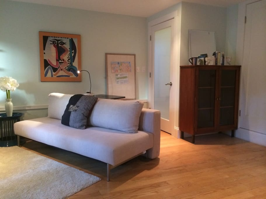 Living area, bookcase for your use, huge walk-in closet with hangers ready for your clothes.