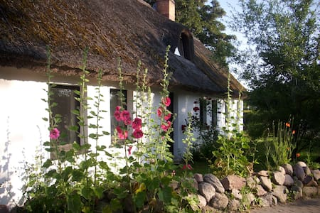 Ferienwohnung im alten Reetdachhaus auf Usedom - Lejlighed