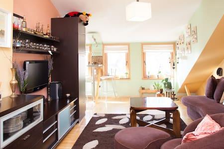 Centrally located new studio flat