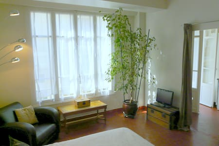 Charming apartment Antibes downtown