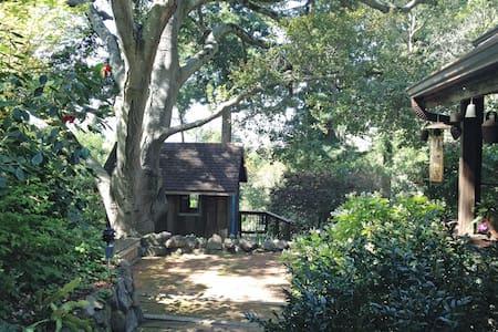 Secret Garden Retreat - Berkeley - Haus