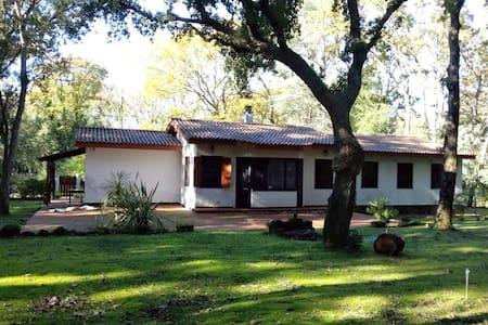 La casa nel bosco di Circe - Villa