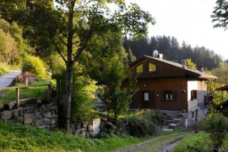 Maso Kerschpamhof - Cabin