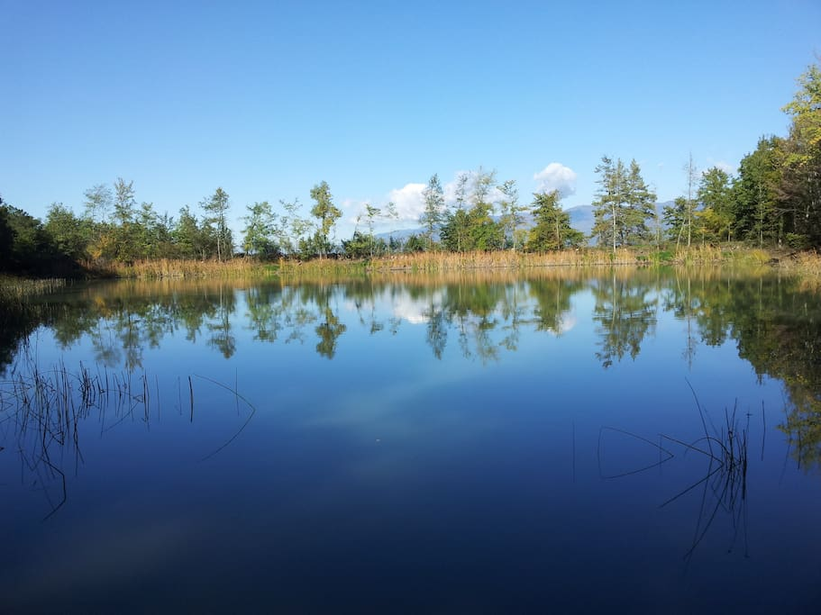 our private lake