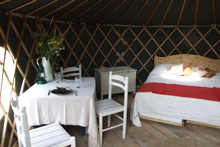 'Beech' Yurt in West Sussex - Yurta