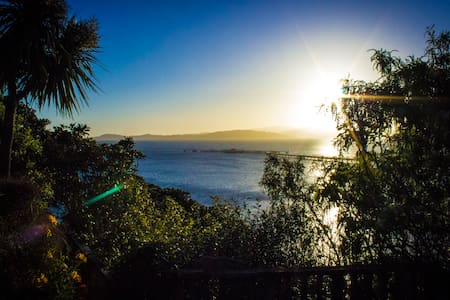 Palm Tree Cottage.  Grand sea views - Lower Hutt - Bed & Breakfast