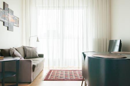 The luxury apartment,garage, WI-FI - Apartment
