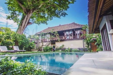 A beautiful hidden space surrounded of nature-save&quiet-south of sanur-5min walk to the beach, restaurants & shops-rooms including aircon,screen tv, DVD,wifi,cable tv (different languages), hot&cold (email hidden),swimmingpool