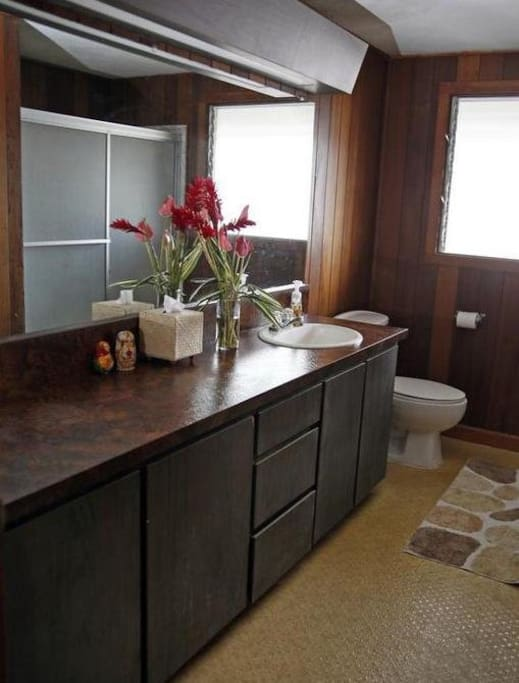 Executive size bathroom with a tub and lots of counter space.