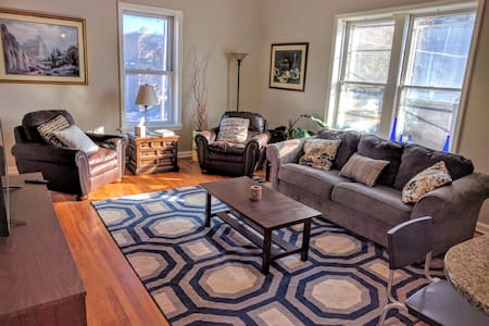 Light-filled apt steps away from Tower Grove Park. - St. Louis - Apartment