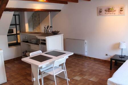 Studio à La Roche Posay avec WIFI en centre-ville - Apartament