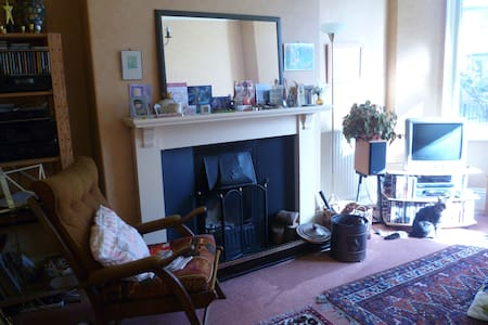 Charming Edwardian home. - Newcastle upon Tyne - House