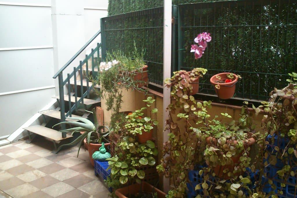 Preciosa entrada con muchas flores y plantas.