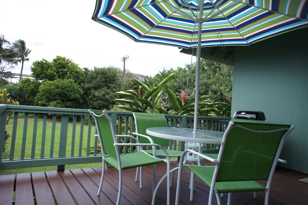 Outside table with umbrella and gas barbecue.