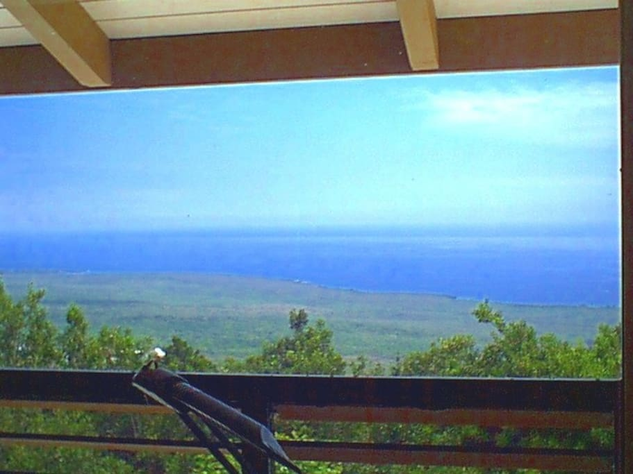 View from Crow's Nest over the macadamia nut trees-- Place of Refuge and Kealakekua bay views