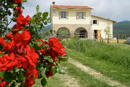 Genuine country/city holiday Lazio - House
