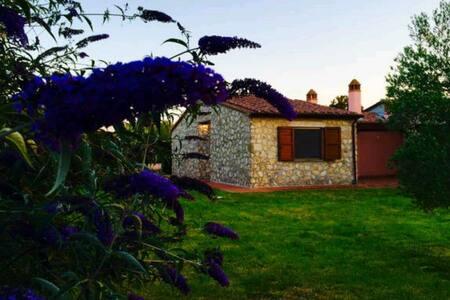 Villino con ampio giardino Terme - House