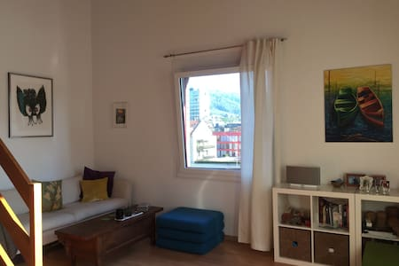 Cozy, private and central! - Zug - Apartment