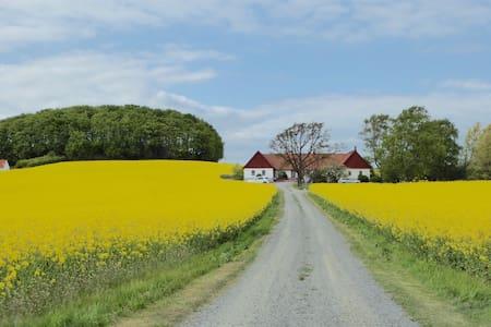 Skarviken 6 - Ystad V