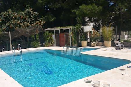 Moderna, espaciosa, jardín, piscina. - Cehegín - Haus