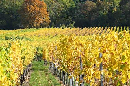 Appart 3p route des vins proximité marchés de Noël - Flat
