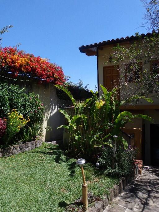 lawn and garden in inner garden