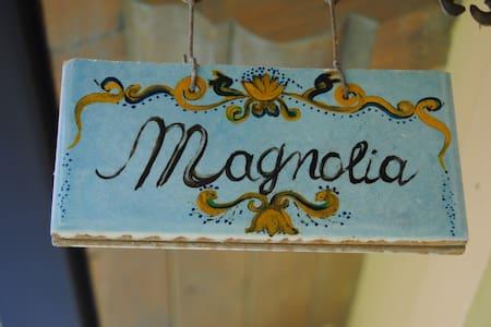 n.3-Magnolia - Camera Singola  - Bed & Breakfast