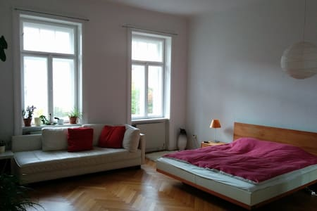 Big room in the heart of Vienna - Lakás