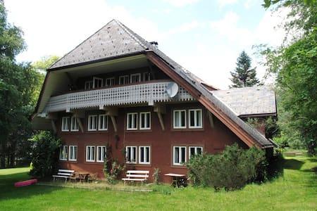Urlaub im Schwarzwald - Sankt Blasien - Appartamento