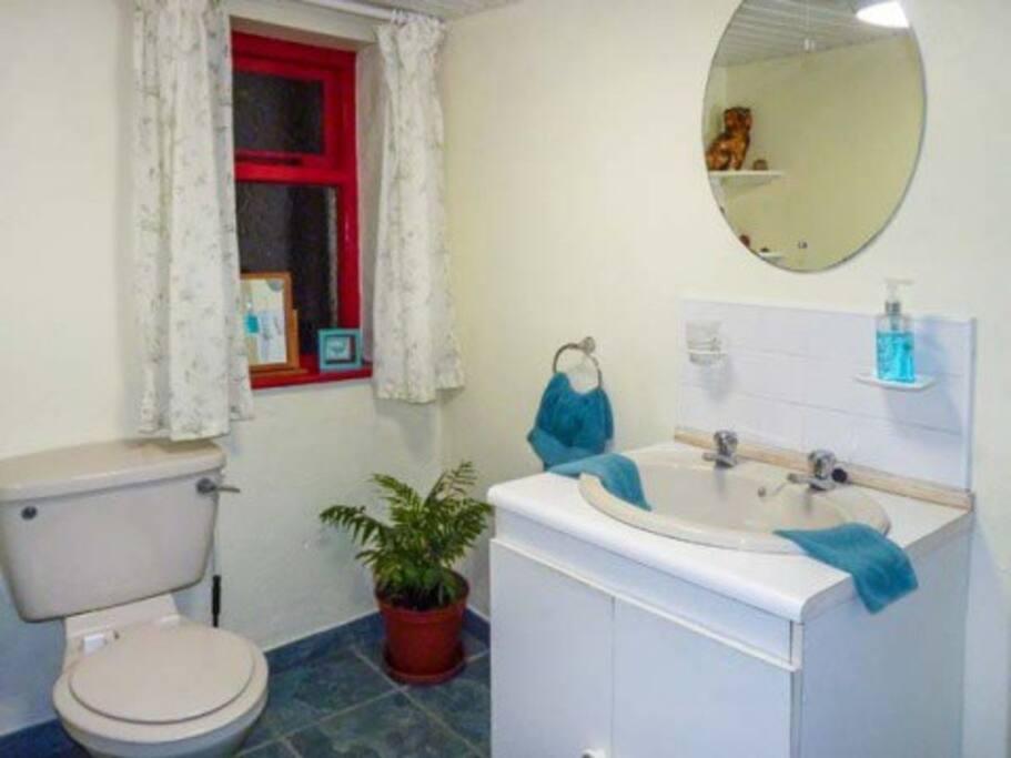 shower room at cottage