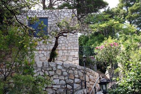 Stone House near Dubrovnik A7 - Lozica
