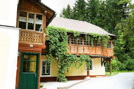 Ferienhaus Loitzl - Ház
