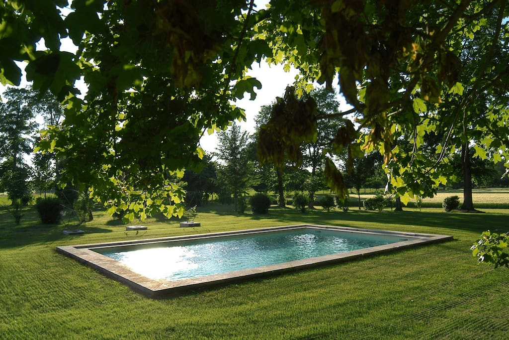 Piscine Swimming pool