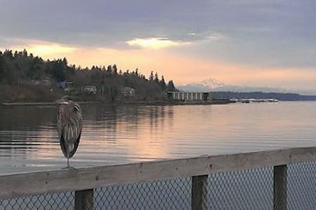 Available: the top floor of the historic Overhulse house overlooking downtown Olympia. The house has views of Mt. Rainier, the state capital building, and is easy walking distance to the Olympia Farmers Market, the Baview Market, and downtown.