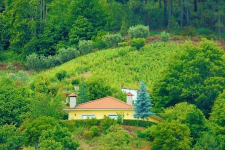 Relax 2 + Pool + Paradise + Douro - Dům