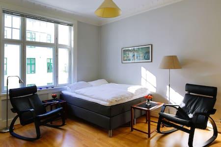 Bright studio in beautiful Frogner - Appartamento